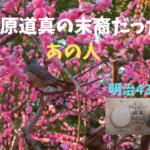 乙号兌換銀行券5円 菅原道真サムネ